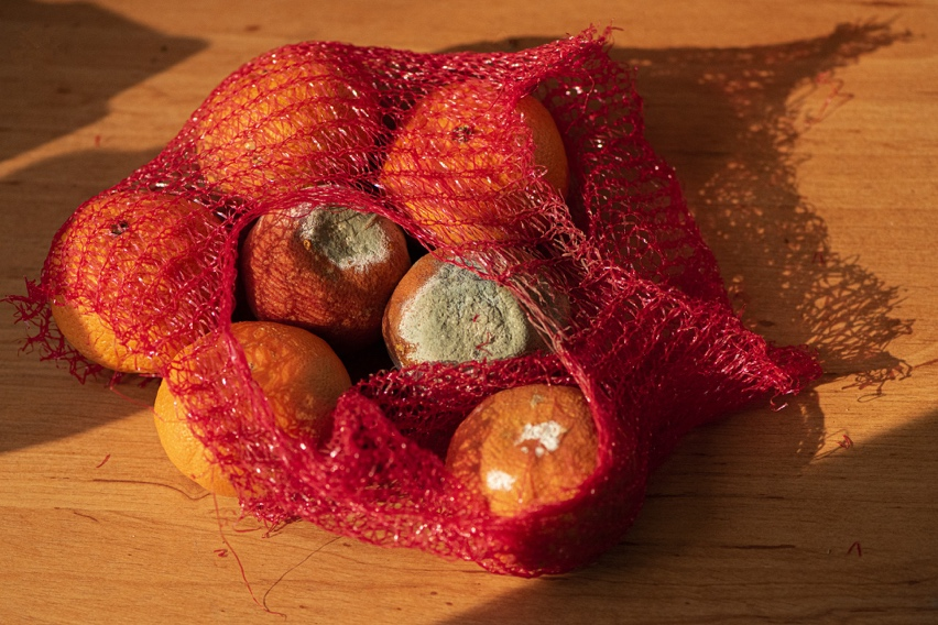 A small sack of ruined oranges